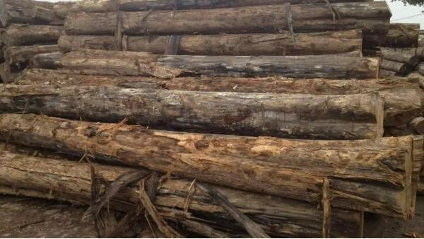 通胀持续的担忧加剧!在今年夏天短暂回落后,木材价格再度上涨……