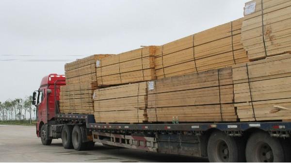 原木出口禁令波及近4000家俄罗斯相关木材企业