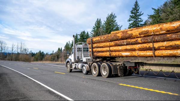 木材价格高涨会导致什么样的后果?