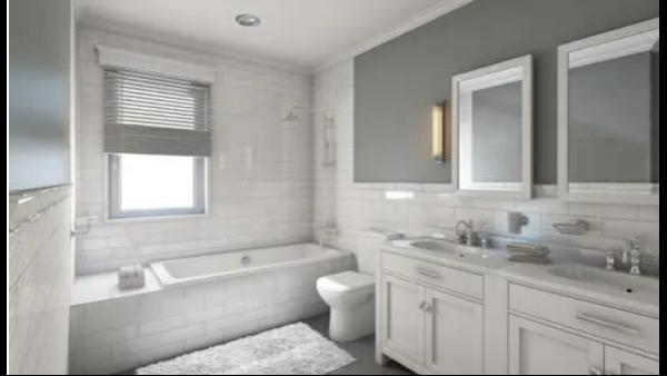 受欢迎的浴室装饰理念是什么?