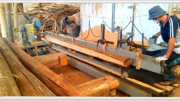 木材的加工工序有哪些呢