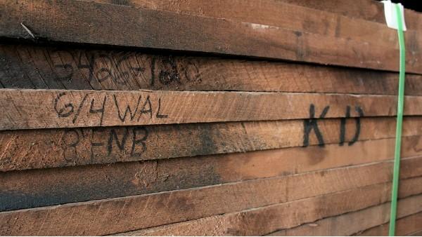 为什么今年北美木材价格这么高?