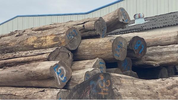德福林木材实拍图片