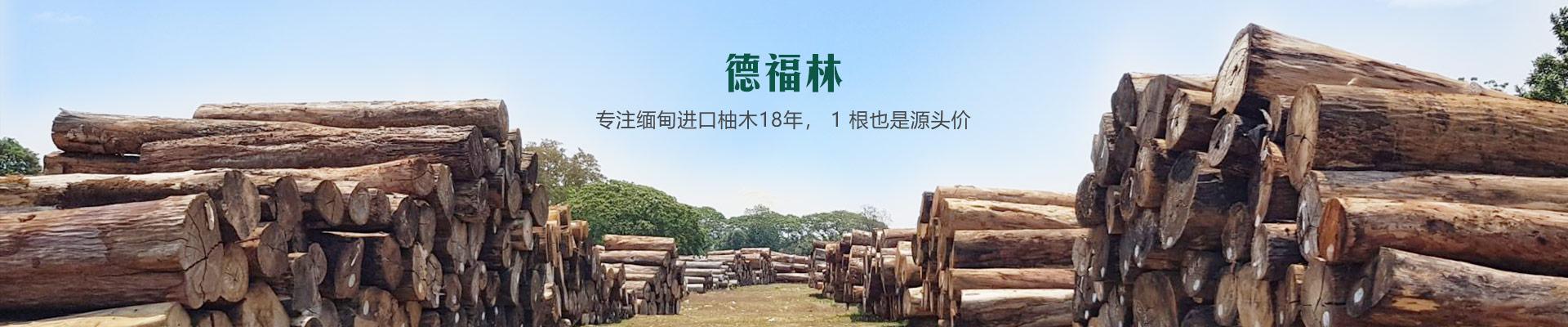 德福林专注缅甸进口柚木18年,1根也是源头价