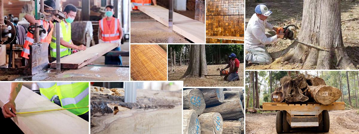 木材定制加工,为实力赋能