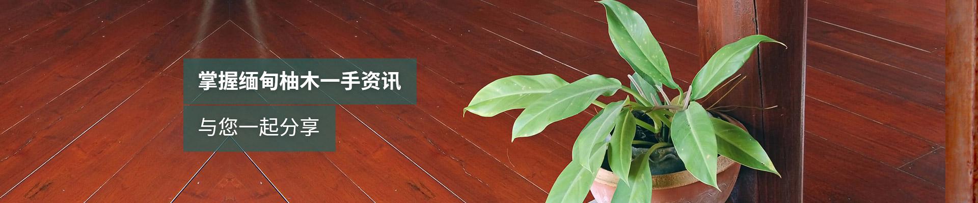 德福林:掌握缅甸柚木一手资讯,与您一起分享