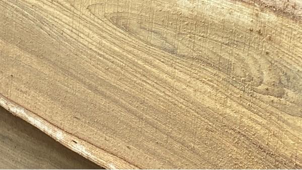 柚木木纹细节图