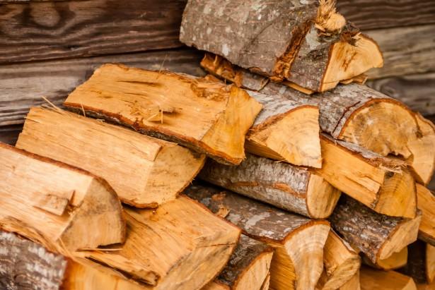 非洲各大国木材资源